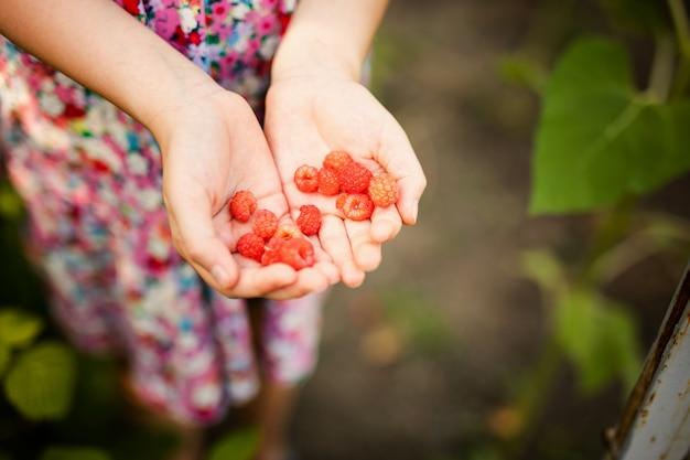 Meisje die in een kleine tuin van de de lentetuin met installaties werken. kind helpt op de boerderij