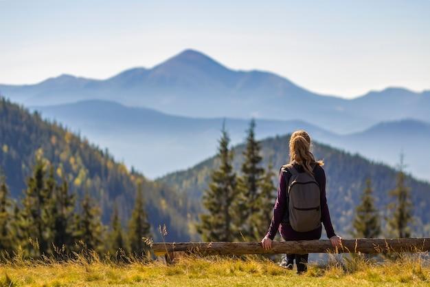 Meisje die met rugzakzitting op boomboomstam van mening van bergen genieten