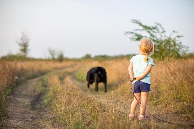 Meisje die met zwarte hond op het gebied terug naar camera in hete de zomeravond lopen.