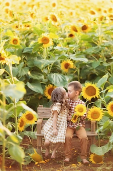 Meisje en jongen kussen op een bankje, met plezier tussen bloeiende zonnebloemen bij zonsondergang
