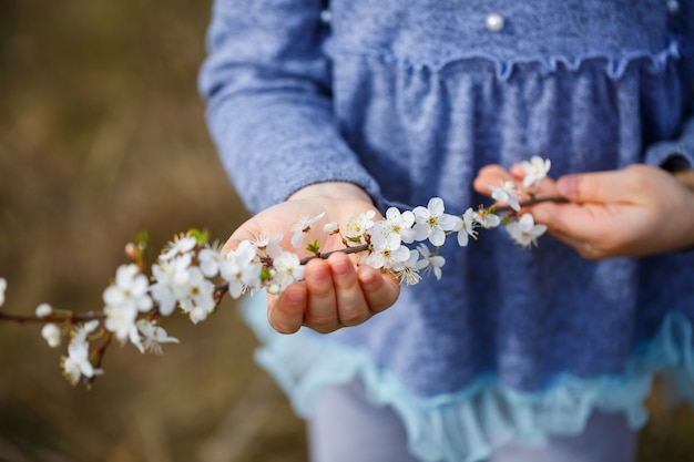 Meisje houdt een tak van bloeiende abrikozen in haar handen. close up van mooie vrouwelijke handen met een tak van bloeiende fruitboom. delicate lente achtergrond. vrouwelijke handen op onscherpe achtergrond