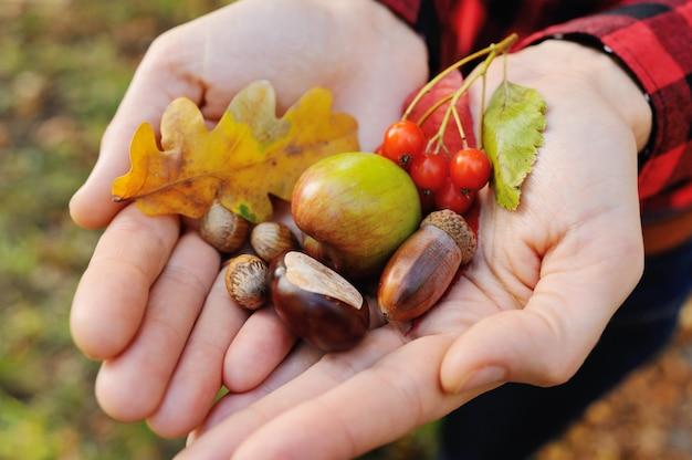 Meisje houdt haar handen op herfstbladeren, eikels, bessen en hazelnoten