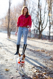 Meisje loopt met toy terriër hond huisdier aan de lijn