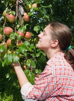 Meisje met appels in de boomgaard