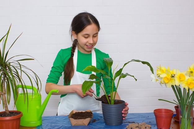 Meisje met donker haar in een schort transplanteert een bloem en giet de aarde in een bloempot met een spatel