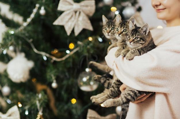 Meisje met drie gestreepte katkatjes op haar handen.