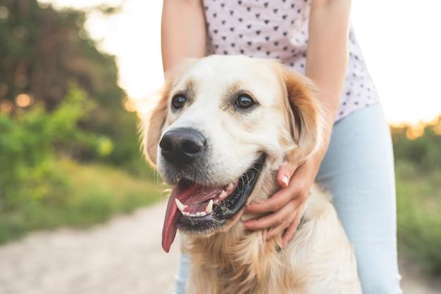 Meisje met gouden hond retriever hoofd in de natuur bij zonsondergang close-up