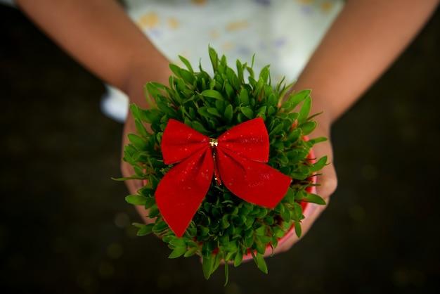 Meisje met groene kersttarwe in een pot met een rode stropdas op de tuin