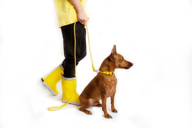 Meisje met haar hond, zwarte en gele kleren. witte achtergrond. studio-opnamen. baby huisdieren concept. hoge kwaliteit foto