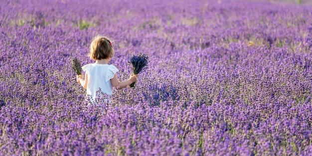 Meisje met lavendelboeketten in een lavendelgebied