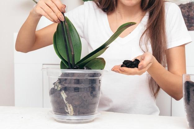 Meisje plant bloem in een transparante pot