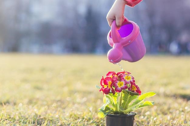 Meisje plant een lentebloem Premium Foto
