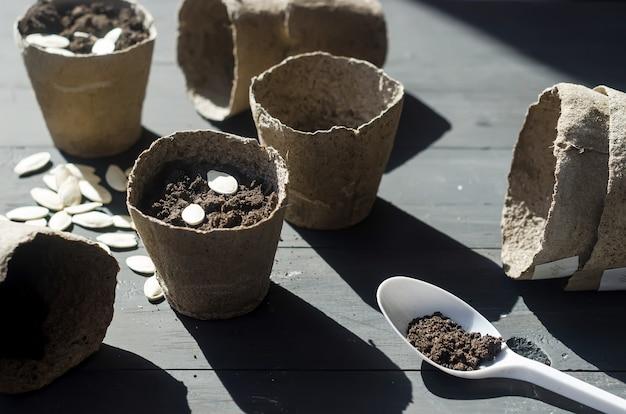Meisje plant zaden in een turfpot op tafel, huisplanten en veel turfpotten, verspreide grond. concept van huistuin en zorg voor planten. succulent transplantatieproces.