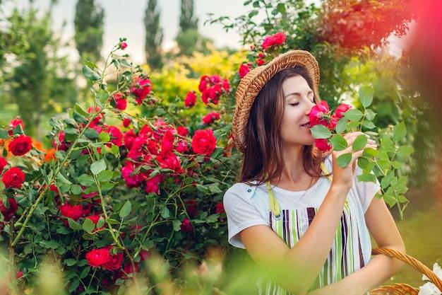 Meisje ruiken en rozen bewonderen. vrouw die bloemen in tuin voor boeket verzamelt. zomer tuinieren.