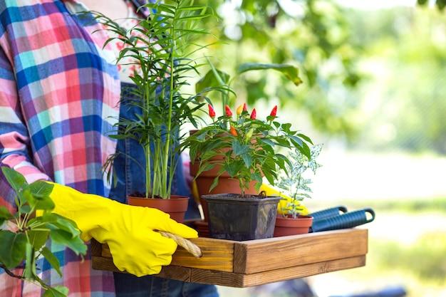 Meisje transplanteert bloemen in de tuin. bloempotten en planten om te verplanten