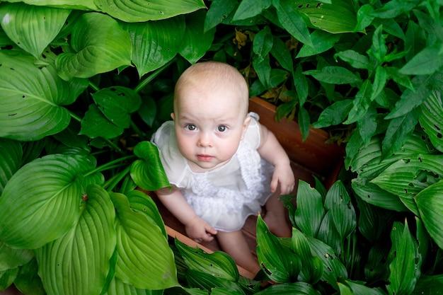 Meisje van 10 maanden oud zitten in bloemen in de zomer in een mooie jurk, bovenaanzicht, artistieke foto van een kind in het gras