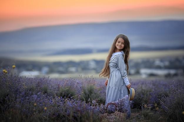 Meisje van 8 jaar gekleed in paarse katoenen jurk verzamelt lavendelbloemen in natuurlijk veld Premium Foto