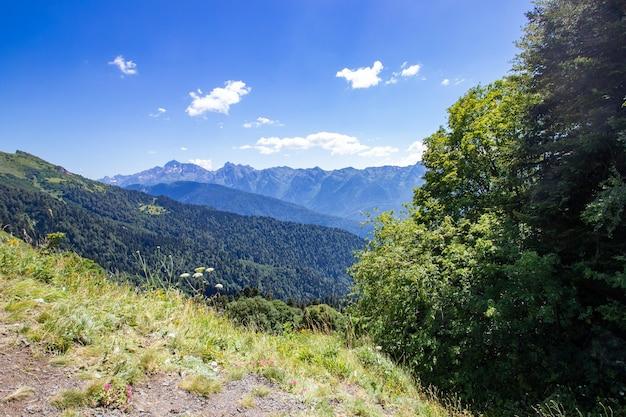 Meisje wandelen in de bergen, genieten van de natuur, wandelen, actieve sporten.