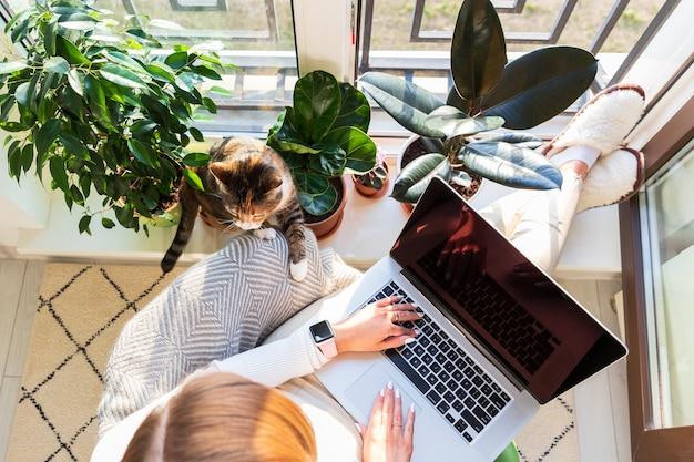 Meisje zit op een leunstoel en zet haar voeten op de vensterbank, werkt op een laptop thuis, een kat in de buurt wil aandacht