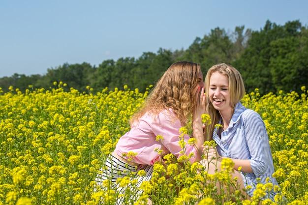 Meisjes fluisteren op het veld