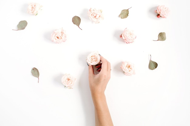 Meisjes hand met rozenknop en bloemenpatroon gemaakt van beige rozen, eucalyptusblad op witte achtergrond. platliggend, bovenaanzicht