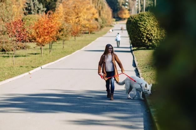 Meisjesgangen bij de herfstpark met jonge witte zwitserse herdershond