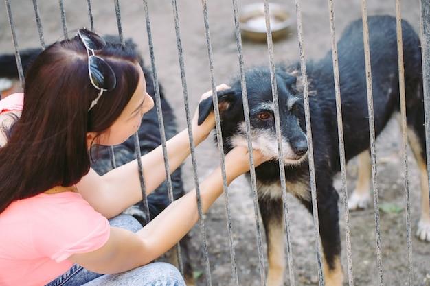 Meisjesvrijwilliger in de kinderkamer voor honden. opvang voor zwerfhonden.