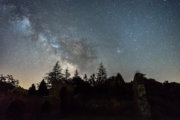 Melkweg boven het boslandschap