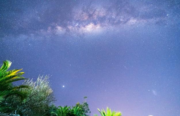 Melkweg in de lucht boven bomen en palmen