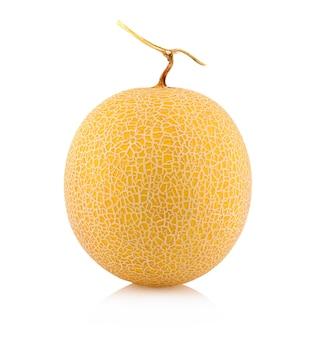 Meloen meloen geïsoleerd