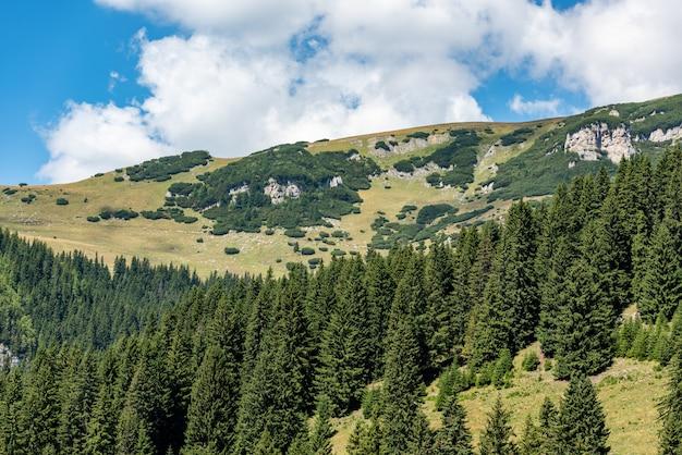 Mening van bucegi-bergen, roemenië, het nationale park van bucegi