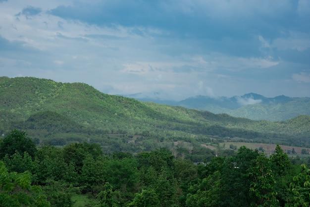 Mening van groene heuvel alvorens met bewolkte hemel te regenen