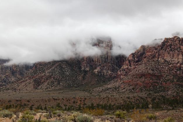 Mening van het rode nationale park van de rotscanion in mistige dag in nevada, de vs