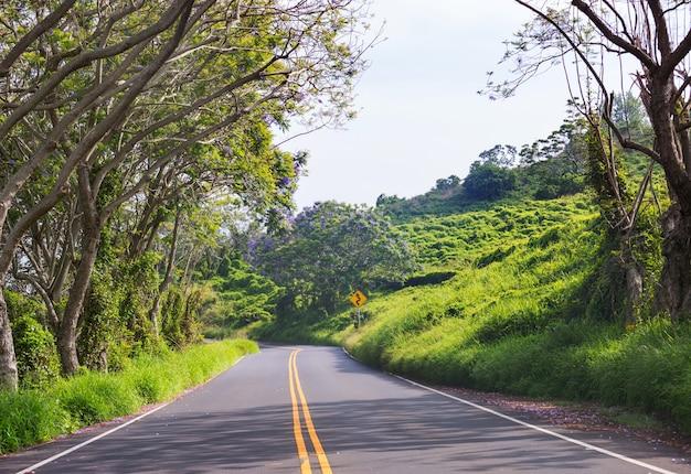 Mening van landschap langs piilani-weg in maui, hawaiiaanse eilanden.