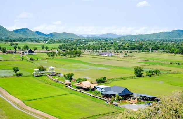 Mening van padievelden in thailand