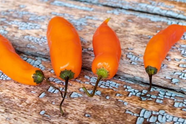 Mening van peruviaanse gele hete peper