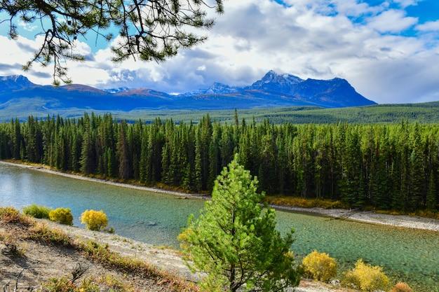 Meningen van bergen en boog-rivier vanuit gezichtspunten bij het brede rijweg met mooi aangelegd landschap van de boogvallei in het nationale park van banff, alberta, canada