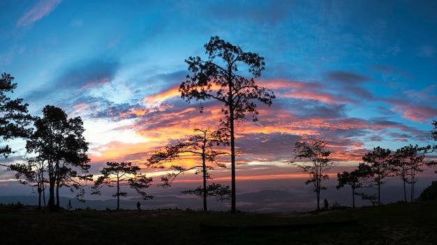 Meningspunt bij natiepark van thailand