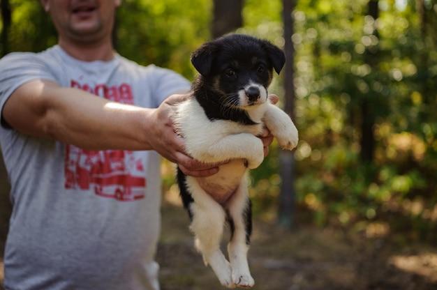 Mens die een klein puppy in het bos houdt