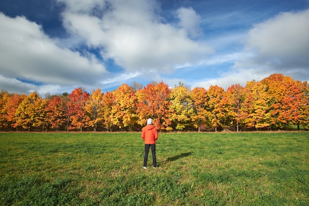 Mens die rood jasje en zwarte jeans iwearing bekijken die rode en gele de herfstbomen tegen de blauwe hemel bekijken. natuur in de herfst. landschap.
