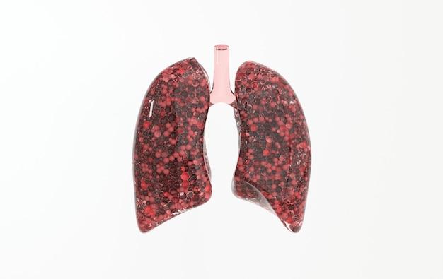 Menselijk ademhalingssysteem anatomie concept gezonde longen wereld tuberculose dag longkanker dag