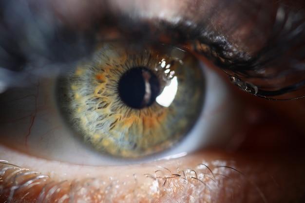 Menselijk oog close-up