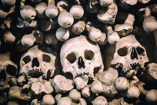 Menselijke botten en schedels