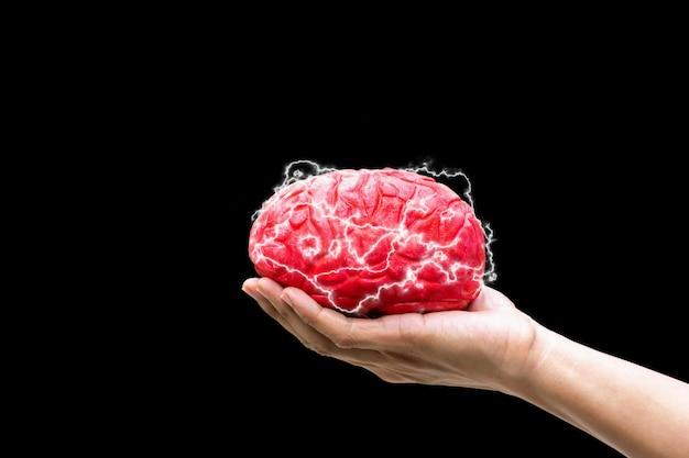 Menselijke hand die de hersenen van het bevelconcept in geheugen op zwarte achtergrond houdt