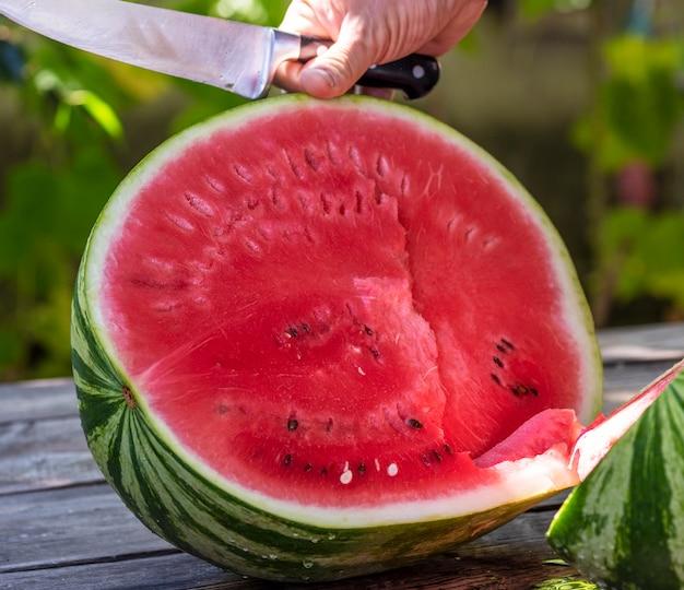 Menselijke hand met een mes snijdt in een halve rijpe grote watermeloen
