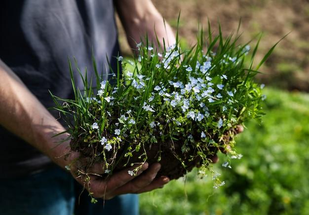 Menselijke hand met gras en bloemen