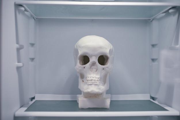 Menselijke schedel op lege koelkastplank