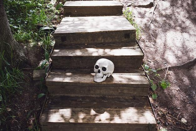 Menselijke schedel op oude houten trap buiten.