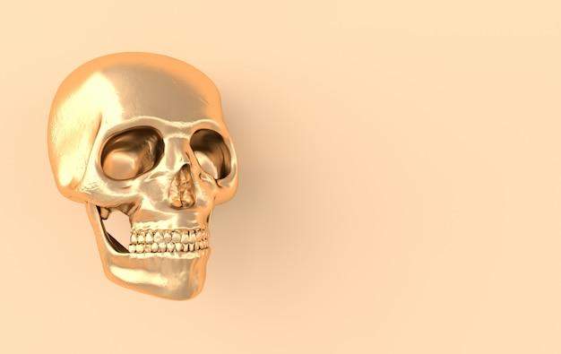 Menselijke schedel weergave