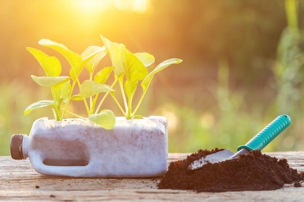 Mensen die groente in plastic fles planten